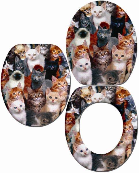 encore plus d 39 accessoires pour la liti re de votre chat. Black Bedroom Furniture Sets. Home Design Ideas