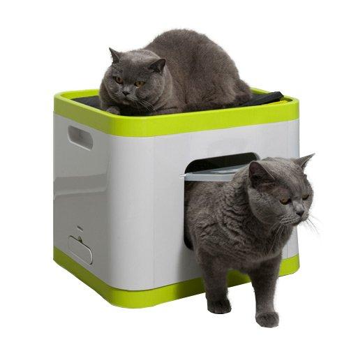 cube la maison de toilette 2 en 1 pour chats. Black Bedroom Furniture Sets. Home Design Ideas