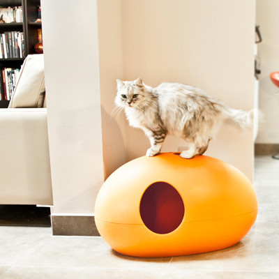 la maison de toilette pour chats poopoopeedo. Black Bedroom Furniture Sets. Home Design Ideas